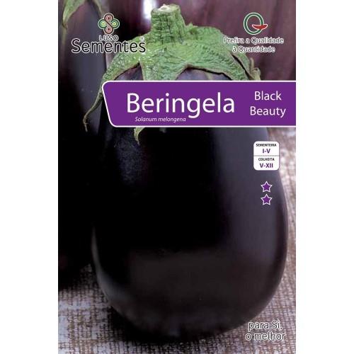 Beringela Black Beauty