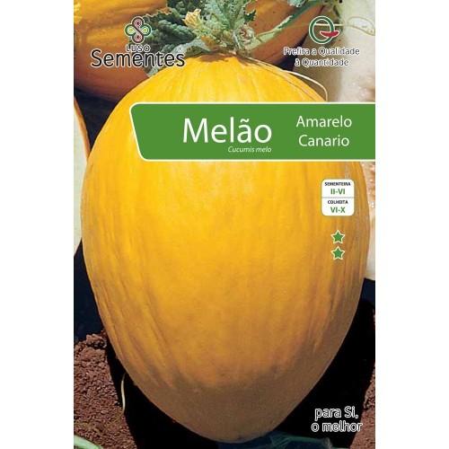 Melão Amarelo Canário