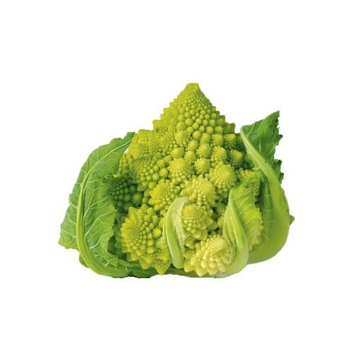 Brócolo Romanesco Ottobrino