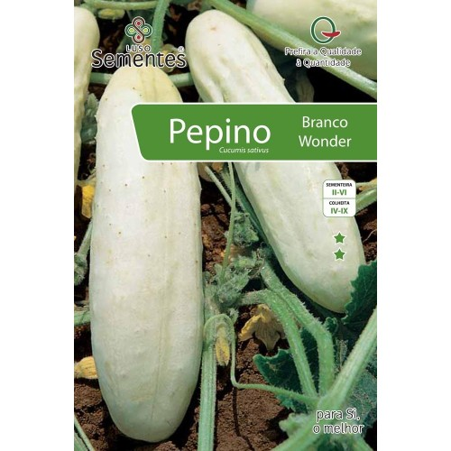 Pepino Branco Wonder