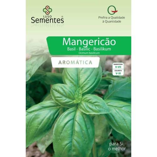 Mangericão Verde