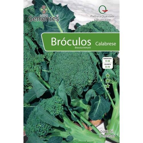 Bróculo Calabrese
