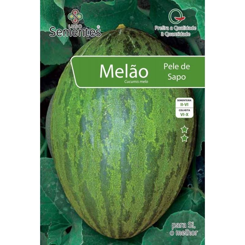 Melão Pele de Sapo