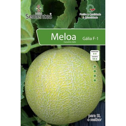 Meloa Gália F1